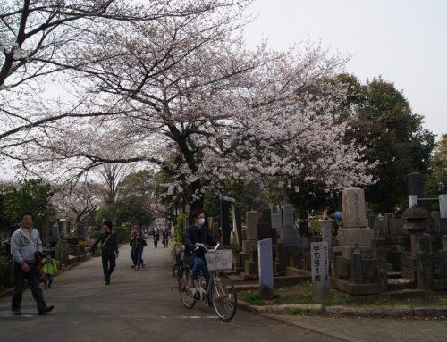 Cómo son los cementerios japoneses y por qué