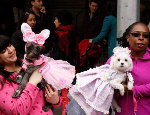 Qué hacer en Nueva York el día de Pascua